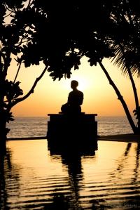 meditatingalonebtwntrees